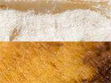 Macro de dos texturas de un plátano.