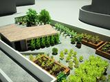 Es un proyecto de huerto urbano.